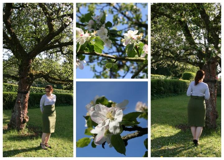 apfelblüten collage 2