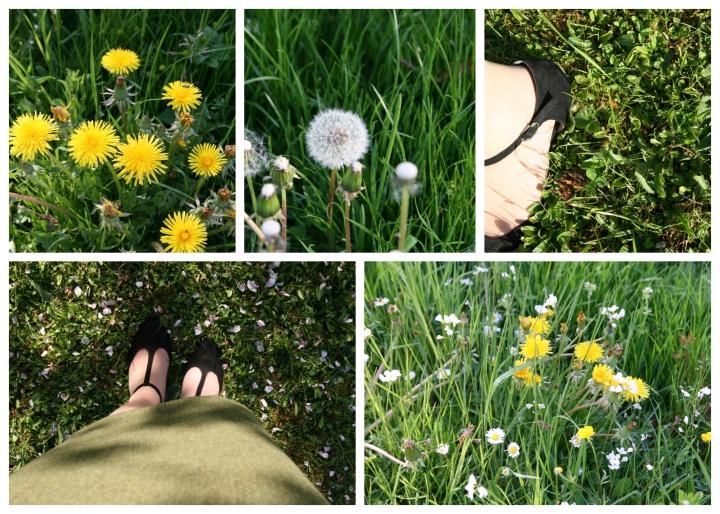apfelblüten collage 6