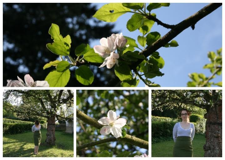 apfelblüten collage 9